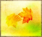 Autumn Grunge Background With Leaves