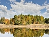 Colorful Autumn Trees Near Lake