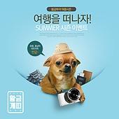 웹배너 (배너), 쇼핑, 강아지, 찬스, 세일 (사건), 개 (개과), 치와와-개 (순종개)
