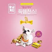 웹배너 (배너), 쇼핑, 강아지, 찬스, 세일 (사건), 개 (개과), 개띠해 (십이지신), 금
