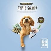 웹배너 (배너), 쇼핑, 강아지, 찬스, 세일 (사건), 개 (개과), 개띠해 (십이지신)