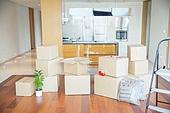 이사, 주택 (주거건물), 상자 (용기), 짐 (가방), 짐꾸리기, 거실