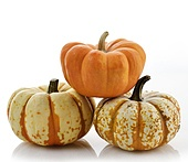 Yellow And Orange Pumpkins,Close Up On White Background