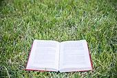 잔디밭 (경작지), 부채꼴로펼쳐짐 (물체묘사), 책