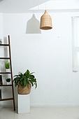 인테리어, 벽,화분,조명기구,사다리