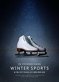 겨울스포츠, 올림픽 (스포츠이벤트), 스포츠, 2018평창동계올림픽 (동계올림픽), 피겨스케이팅 (아이스스케이팅)