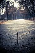 십자가,부활절,고난주간,사순절,나무십자가,도로,길,이정표