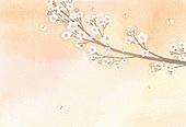 백그라운드, 수채화 (회화기법), 번짐, 봄, 벚꽃, 꽃잎, 나비