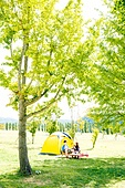 커플 (인간관계), 텐트, 여유로운주말 (레저활동), 휴가, 여행, 캠핑, 디지털태블릿 (개인용컴퓨터), 응시, 음악, 우쿨렐레 (통기타), 나무