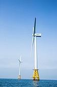 제주도 (대한민국), 풍력터빈, 대체에너지 (연료와전력발전)