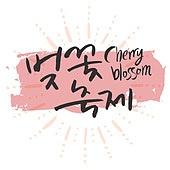 벡터파일 (일러스트), 벚꽃, 벚꽃축제, 꽃, 캘리그래피 (문자), 번짐, 패턴, 팝업, 배너, 현수막, 잉크