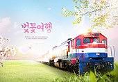 벚꽃, 여행, 봄, 꽃, 기차