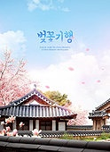 벚꽃, 여행, 봄, 꽃, 한옥