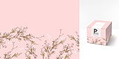 백그라운드, 트렌드, 컬러, 포장, 패턴, 선물상자, 상자, 드라이플라워, 꽃