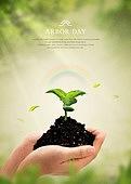 식목일, 4월, 기념일, 연례행사, 새싹