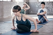 한국인, 여성, 남성, 요가, 요가수업 (요가), 스트레칭, 운동, 소머리자세