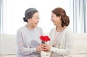 한국인, 가족, 가정의달 (홀리데이), 어버이날 (홀리데이), 카네이션 (패랭이꽃), 어머니 (부모), 딸, 미소, 마주보기