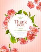 꽃, 카네이션, 가정의달, 5월, 감사, 스승의날 (홀리데이), 축하카드 (인쇄매체)