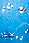 물 (자연현상), 물가 (물), 수영장, 물결, 여름, 계절