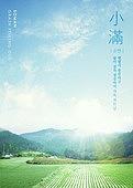 백그라운드, 풍경 (컨셉), 여름, 절기, 계절, 농업, 소만
