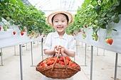 어린이 (인간의나이), 딸기밭, 견학 (사건), 농장, 수확, 미소, 즐거움, 바구니