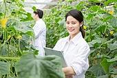 한국인, 여성, 연구 (주제), 농업, 백색가운, 생물학자, 남성, 미소