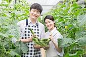 한국인, 남성, 오이, 채소밭 (경작지), 농부 (농수산업), 귀농, 농업, 미소