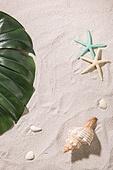 여름, 계절, 오브젝트 (묘사), 모래 (자연현상), 화장품 (몸단장제품), 뷰티, 탑앵글, 야자잎, 치즈나무 (열대관목)