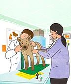 애완동물 (길든동물), 동물병원, 수의사, 진찰 (의료행위), 강아지, 개 (개과), 청진기