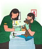 애완동물 (길든동물), 동물병원, 수의사, 진찰 (의료행위), 강아지, 개 (개과), 치료
