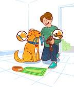 애완동물 (길든동물), 펫티켓 (예절), 개줄 (애완동물장비), 걷기 (물리적활동), 애완견 (개), 리트리버
