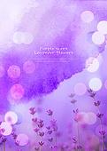 편집디자인, 라벤더 (식물), 보라 (색상), 꽃, 수채화 (회화기법), 울트라바이올렛, 풍경 (컨셉), 번짐