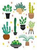 원예 (레크리에이션), 홈가드닝, 원예장비 (장비), 취미, 식물, 화분, 선인장, 다육식물 (식물)