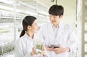 연구소, 과학자, 식물, 유전자연구, 관찰, 미소