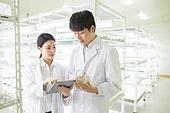연구소, 과학자, 식물, 유전자연구, 연구 (주제), 관찰, 대화