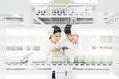 연구소, 과학자, 식물, 유전자연구, 관찰, 미소, 만족
