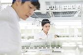 연구소, 과학자, 식물, 유전자연구, 관찰