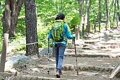 여성, 하이킹 (아웃도어), 등산복 (옷), 혼자여행 (여행), 산, 산림욕, 산림, 숲, 걷기 (물리적활동)