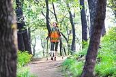 여성, 하이킹 (아웃도어), 등산복 (옷), 혼자여행 (여행), 산, 산림욕, 산림, 숲, 걷기 (물리적활동), 욜로 (컨셉)