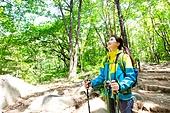 여성, 하이킹 (아웃도어), 등산복 (옷), 혼자여행 (여행), 산, 산림욕, 산림, 숲