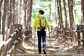 남성, 하이킹 (아웃도어), 산, 혼자여행 (여행), 등산복, 뒷모습, 풍경보기 (응시)