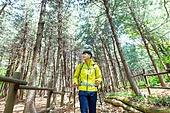 남성, 하이킹 (아웃도어), 산, 산림욕, 혼자여행 (여행), 등산복, 산책길 (보행로), 걷기, 풍경보기 (응시)