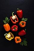 백그라운드, 탑앵글 (뷰포인트), 채소, 컬러, 파프리카, 음식재료, 채식, 유기농