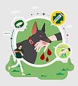 안전, 캠페인, 라이프스타일, 개 (개과), 혈액 (생물의물질), 광견병, 펫티켓