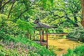 고궁, 한옥, 한국 (동아시아), 서울 (대한민국), 전통문화, 정원