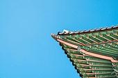 고궁, 한옥, 한국 (동아시아), 서울 (대한민국), 전통문화, 조선시대 (한국전통), 지붕 (건물의부분), 기와집