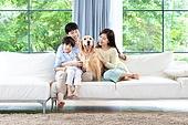 가족, 집 (주거건물), 애완동물 (길든동물), 셔틀랜드쉽독 (콜리), 함께함 (컨셉), 거실, 미소