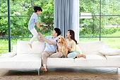 가족, 집 (주거건물), 애완동물 (길든동물), 셔틀랜드쉽독 (콜리), 함께함 (컨셉), 거실, 미소, 점프