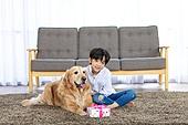 어린이 (인간의나이), 애완동물 (길든동물), 애완견, 선물 (인조물건), 선물상자, 골든리트리버 (리트리버), 미소