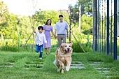 가족, 집 (주거건물), 애완동물 (길든동물), 함께함 (컨셉), 미소, 걷기 (물리적활동), 달리는 (물리적활동), 골든리트리버 (리트리버)